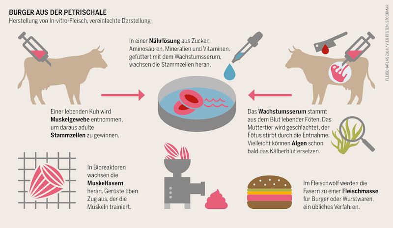 Grafik_Laborfleisch